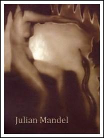 Julian Mandel